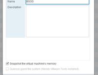 Virtual Machine Crash Dump Nasıl Alınır?