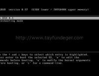 ESX root password 'u resetlemek