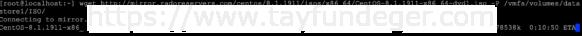 Wget ile ESXi Datastore ISO Download