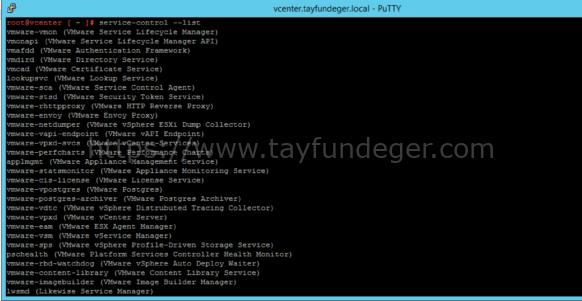 vCenter Server 7 Servislerin Kontrolü