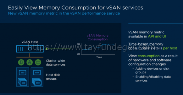 VSAN ve Memory Tüketimi