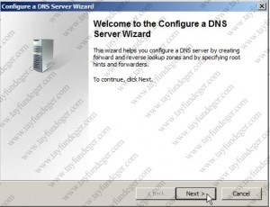 Welcome to the Configure a DNS Server Wizard