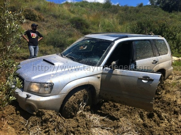 forester4